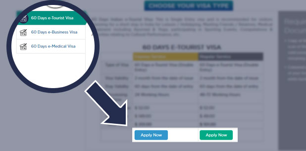 Select the Visa type and apply now